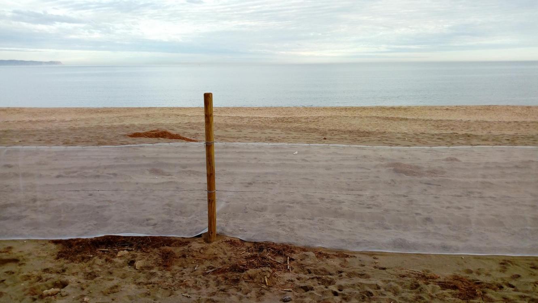 Estartit platja arena sorra