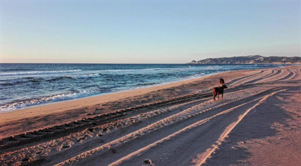 arena maquinas playa estartit
